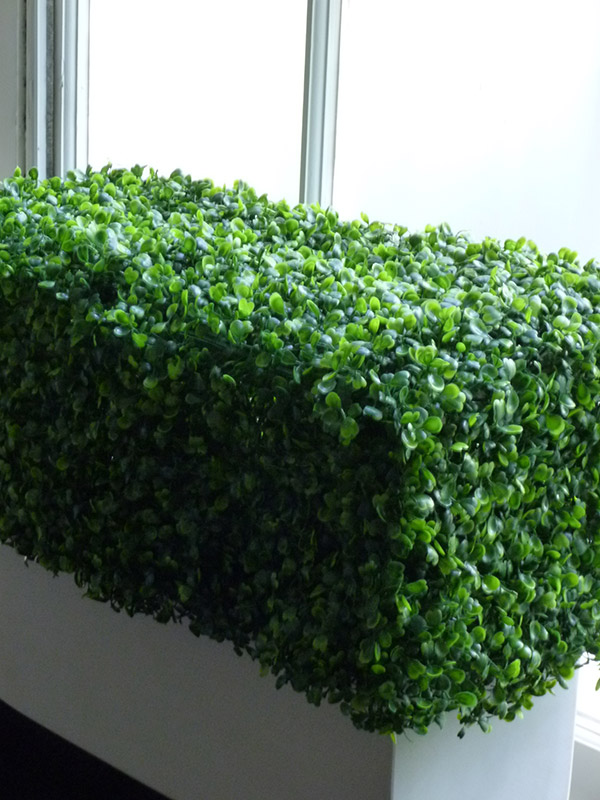Artificial hedge in white window box